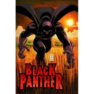 Black Panther Vol. 1: Who Is The Black Panther