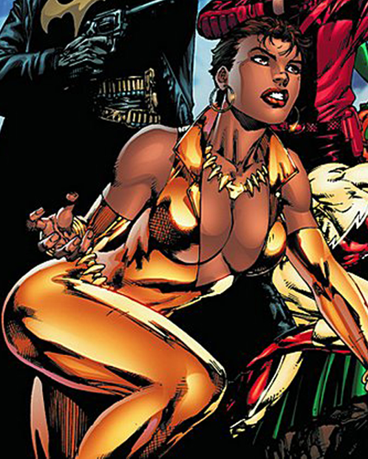 http://worldofblackheroes.files.wordpress.com/2011/06/vixen-9.jpg