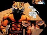 bronze tiger10