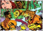 bronze tiger6