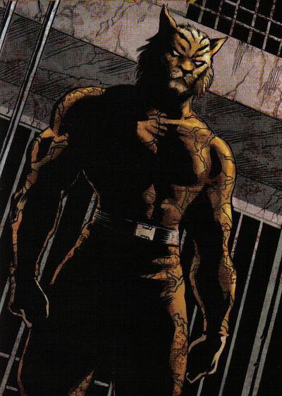 bronze tiger character worldofblackheroes